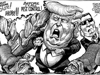 Trump Pest Control